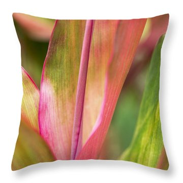 Throw Pillow featuring the photograph Tropical Ti-leaves by Charmian Vistaunet
