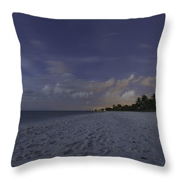 Tropical Winter Throw Pillow by Christopher L Thomley