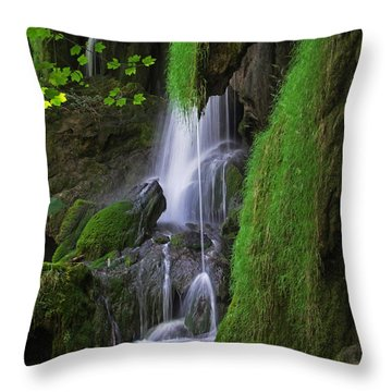 Tropical Wonder Throw Pillow by James Roemmling