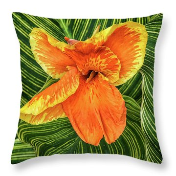 Tropicanna Beauty Throw Pillow