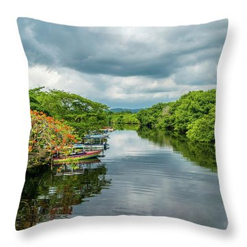Cloudy Skies Over The River Throw Pillow