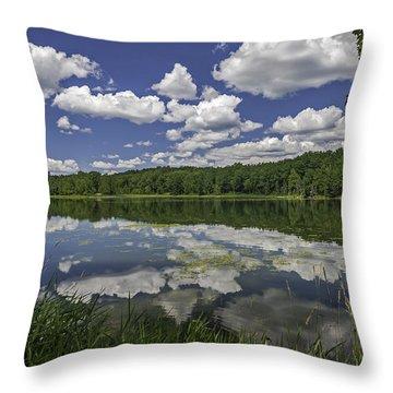 Trout Lake Throw Pillow
