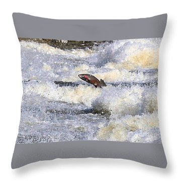 Trout Throw Pillow by Robert Pearson