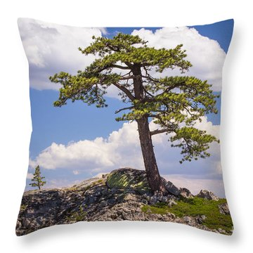 Truckee  Throw Pillow