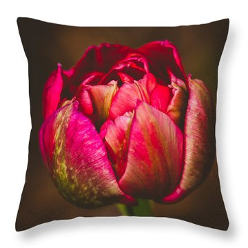 True Colors Throw Pillow by Yvette Van Teeffelen