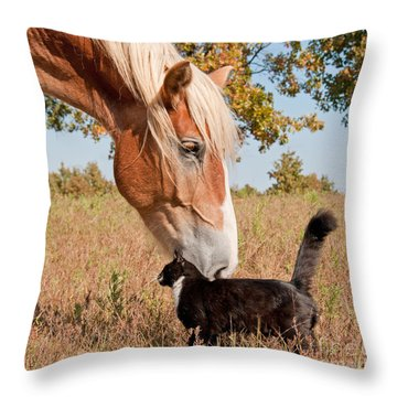 Truest Friendship Throw Pillow