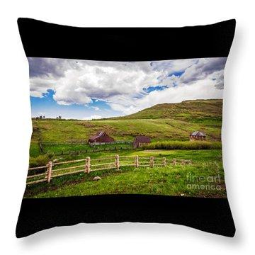 True Grit Ranch Throw Pillow