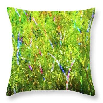 True Throw Pillow by Heidi Scott