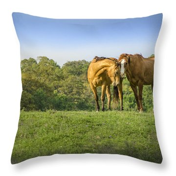 True Love Throw Pillow by Debbie Karnes