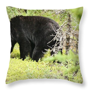 Throw Pillow featuring the photograph True Nature by Al Fritz