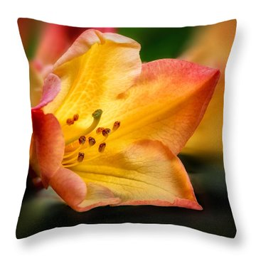 Trumpet Of Spring Throw Pillow by Mary Jo Allen