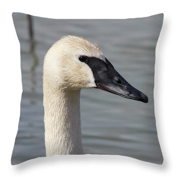Trumpeter Portrait Throw Pillow