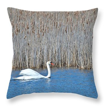 Trumpeter Swan 0967 Throw Pillow by Michael Peychich