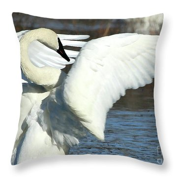 Throw Pillow featuring the photograph Trumpeter Swan by Paula Guttilla