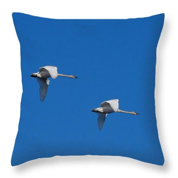 Trumpeter Swans 1725 Throw Pillow by Michael Peychich