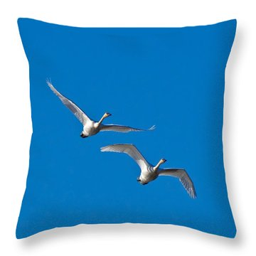 Trumpeter Swans 1735 Throw Pillow by Michael Peychich