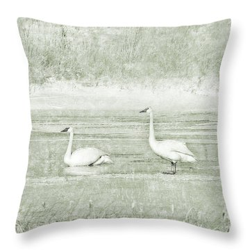 Throw Pillow featuring the photograph Trumpeter Swan's Winter Rest Green by Jennie Marie Schell