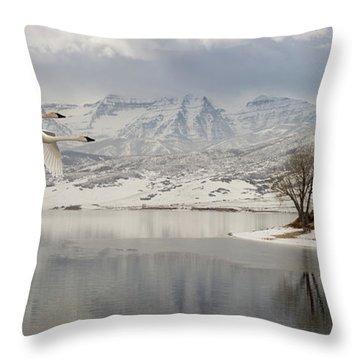 Trumpeter Swans Wintering At Deer Creek Throw Pillow
