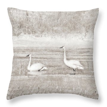 Throw Pillow featuring the photograph Trumpeter Swan's Winter Rest Beige by Jennie Marie Schell