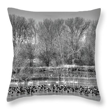 Trumpeters And Canadians In Iowa Throw Pillow