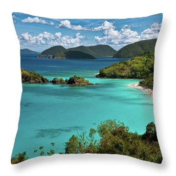 Trunk Bay Overlook Throw Pillow by Harry Spitz