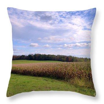 Trusting Harvest Throw Pillow