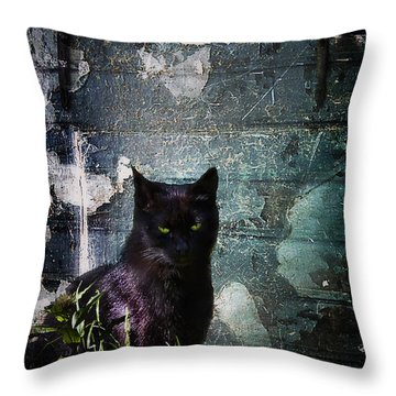 Truth Or Stare... Throw Pillow