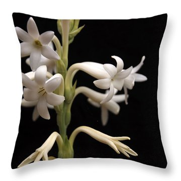 Tuberose Throw Pillow by Charles Ables