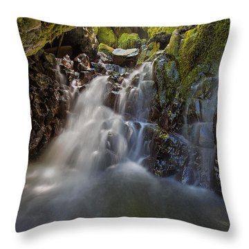 Tucked Away In Gorton Creek Throw Pillow by David Gn