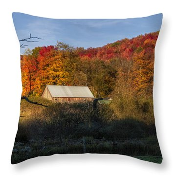 Throw Pillow featuring the photograph Tucked Away by Mark Papke