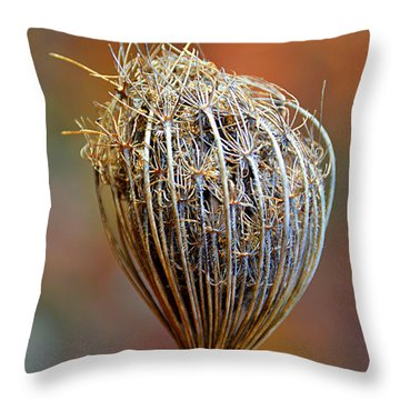 Throw Pillow featuring the photograph Tucked In For Winter by SimplyCMB