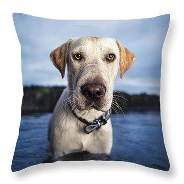 Tucker Throw Pillow