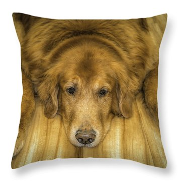 Tucker Throw Pillow by Marion Johnson