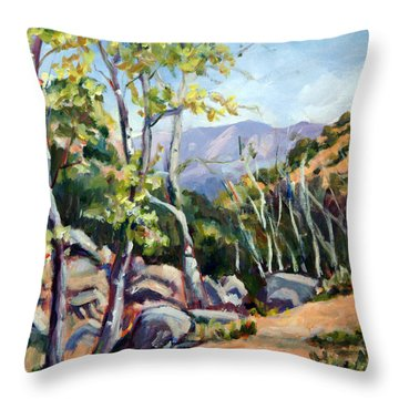Tucson I Throw Pillow