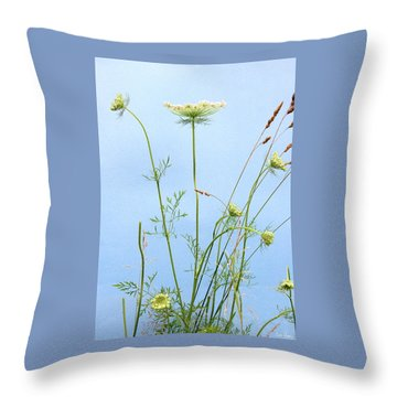 Tuft Of Queen Anne's Lace Throw Pillow