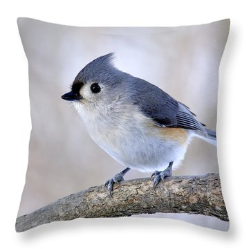 Tufted Titmouse On Dogwood 2 Throw Pillow
