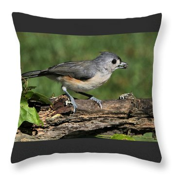 Tufted Titmouse On Tree Branch Throw Pillow