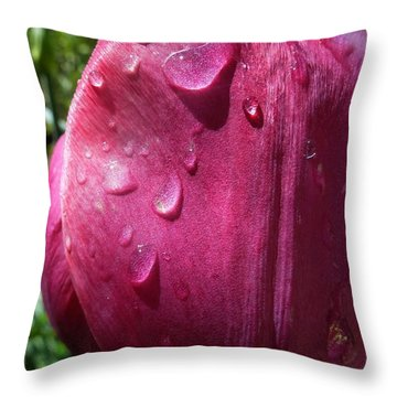 Tulip After The Rain Throw Pillow by Jean Bernard Roussilhe