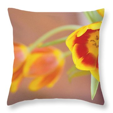 Throw Pillow featuring the photograph Tulip Beauty by Deborah  Crew-Johnson
