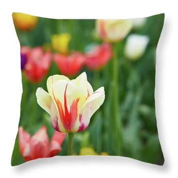 Tulip Bed Throw Pillow