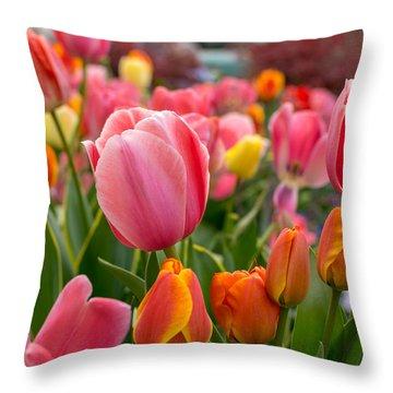Tulip Bed Throw Pillow