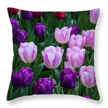 Tulip Blush Throw Pillow