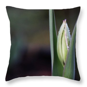 Tulip Bud Throw Pillow