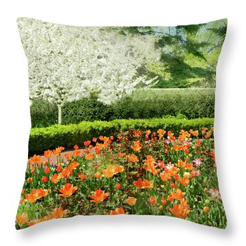 Throw Pillow featuring the photograph Tulip Cafe by Diana Angstadt