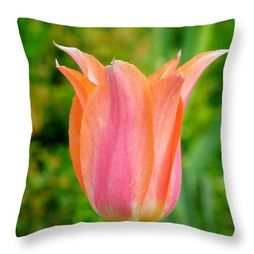 Throw Pillow featuring the photograph Tulip by Chad and Stacey Hall