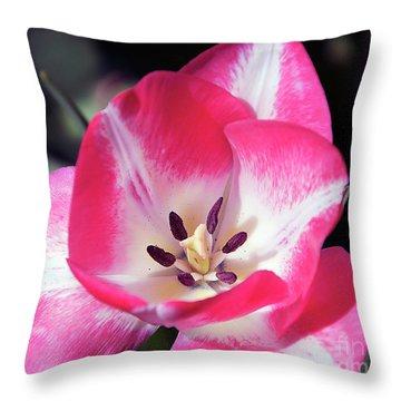 Throw Pillow featuring the photograph Tulip by Elvira Ladocki