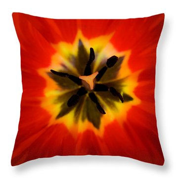 Tulip Explosion Kaleidoscope Throw Pillow by Teresa Mucha