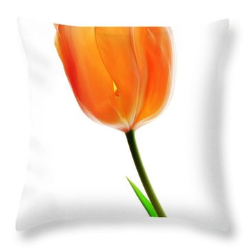 Tulip Flower Throw Pillow by Charline Xia