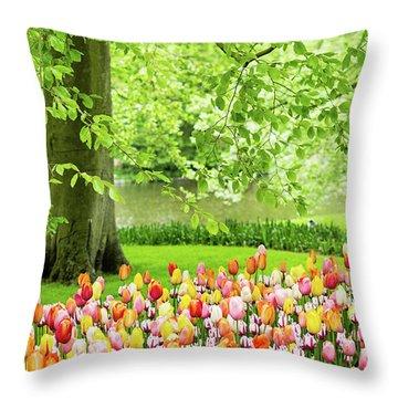 Tulip Garden - Amsterdam Throw Pillow