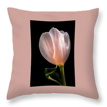 Tulip In Light Throw Pillow